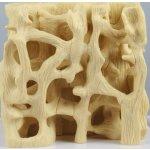 Healthy / osteoporotic bone structure comparison model