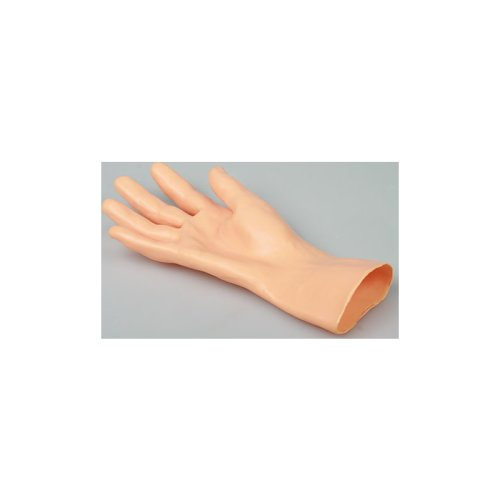 Hand skin for GM12428